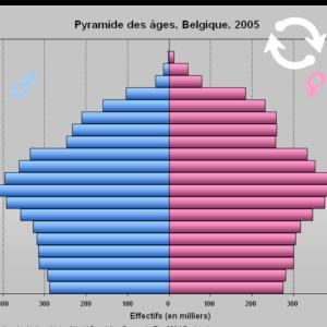 Pyramide des âges, Belgique, 2005.