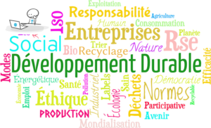Nuage de mots évoquants le Développement Durable